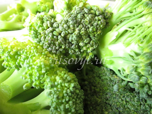 Брокколи в кляре: рецепт приготовления